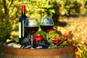 Vini - Abruzzo - Enogastronomia