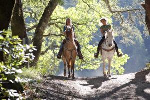 Passeggiate ed escursioni a cavallo nel Parco Nazionale d'Abruzzo