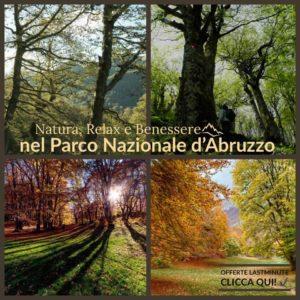 Parco Nazionale d'Abruzzo - Scopri le Offerte